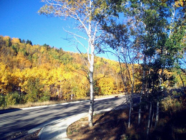 Featured Property in Deadwood, SD 57732